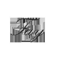 FAY logo