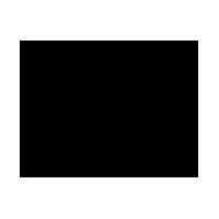 PEPE logo