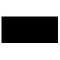 WEEJUNS logo