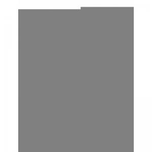 CALZE logo